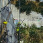 Foto: Radek Homola on Unsplash