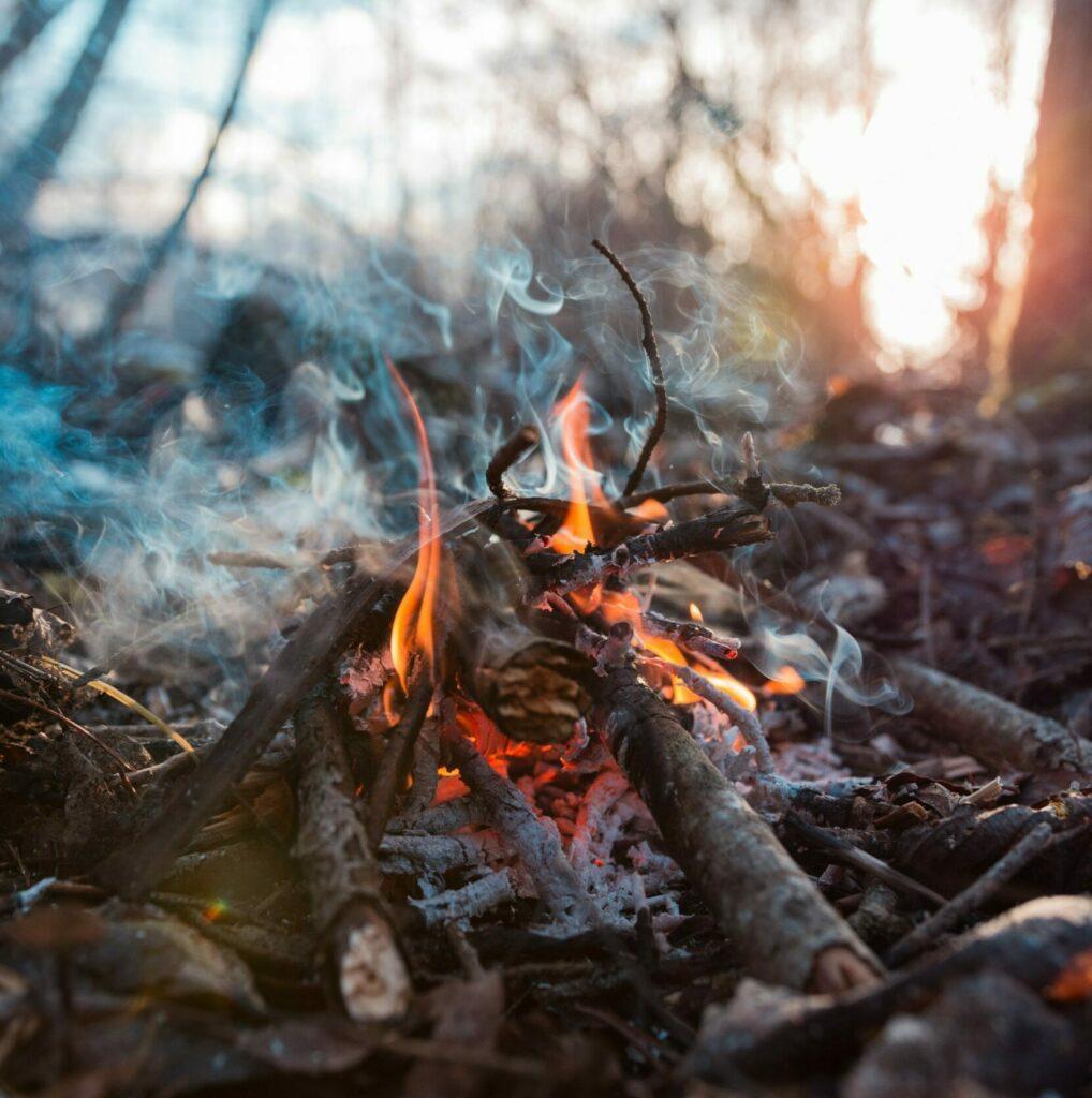 Photo by Siim Lukka on Unsplash