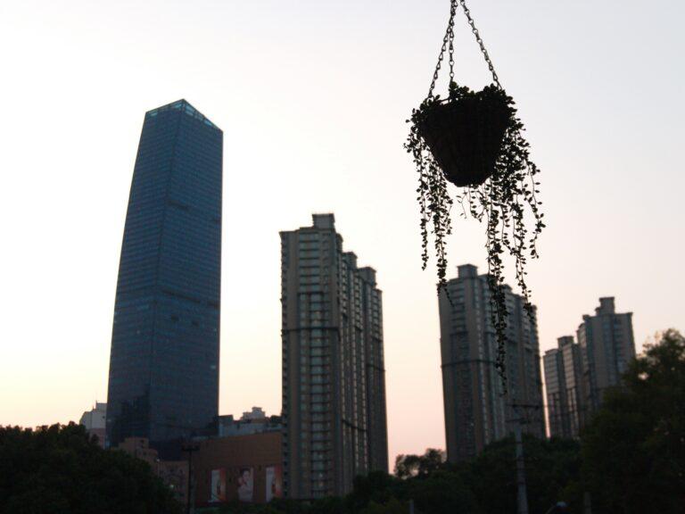 Shanghai - Expat